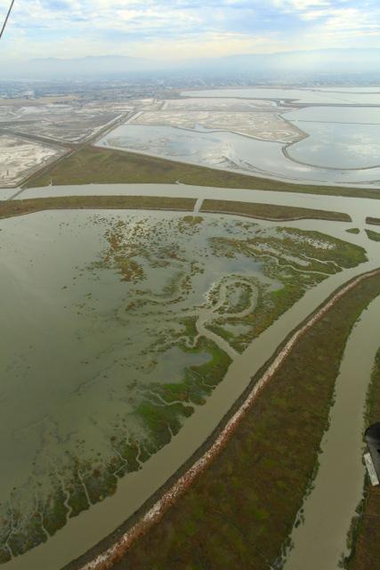 Restoration of Pond A21. Photo: Mark Holmes