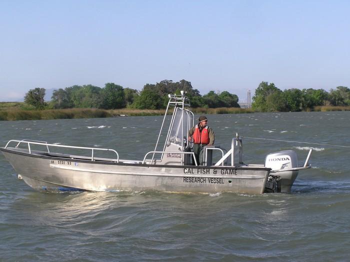 Delta smelt boat
