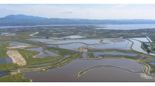 The Montezuma Wetlands restoration used over 3 million cubic yards of dredged sediment from elsewhere in the Bay. Photo: Joe LaClair