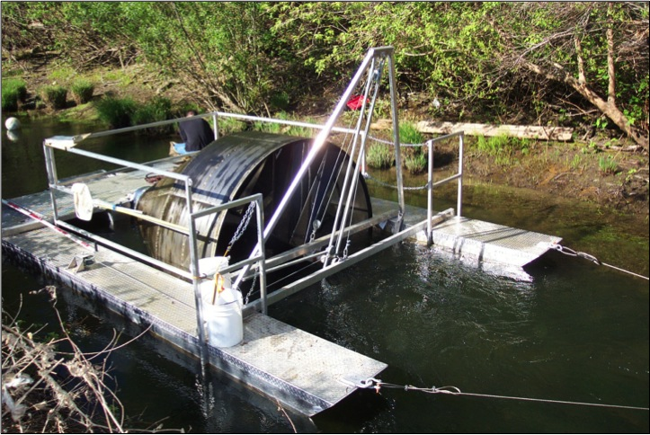 The rotary screw trap allows biologists to obtain a representative sample of the fish passing through a stream reach without harming individuals. Image credit: Jonathan Koehler