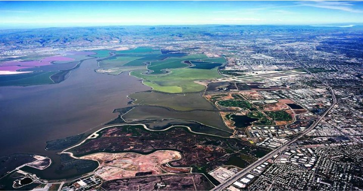The South San Francisco Bay Shoreline Study will prepare a plan against future sea-level rise in the Bay. A combination of flood protection levees and wetlands that evolve over time will be used, improving safety while helping to restore Bay habitats.