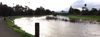 Flooding on San Francisquito Creek a mile from the Bay. Photo: Len Materman