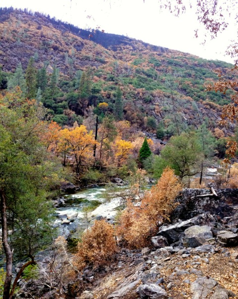 Monitoring to assess ecosystem and water quality impacts of the Yosemite Rim Fire on reaches of the Tuolumne River has been a priority.  Image credit: Bill Sears