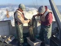 Aaron & Andreas emptying net