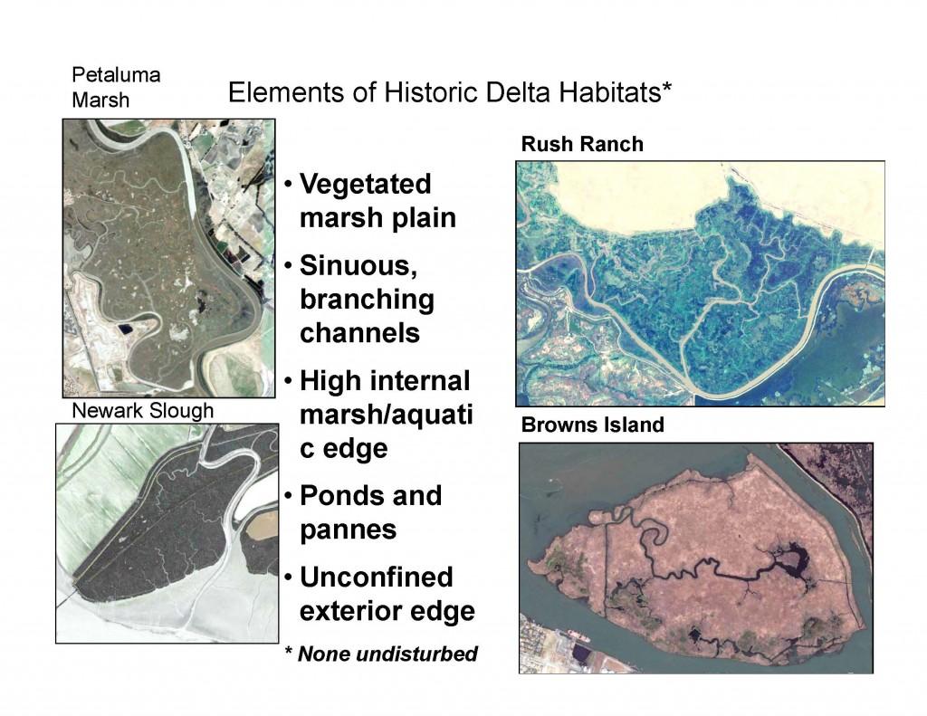 Delta Habitats2