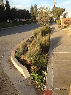 Green LID, Bransten Avenue, San Carlos. Photo courtesy Matt Fabry