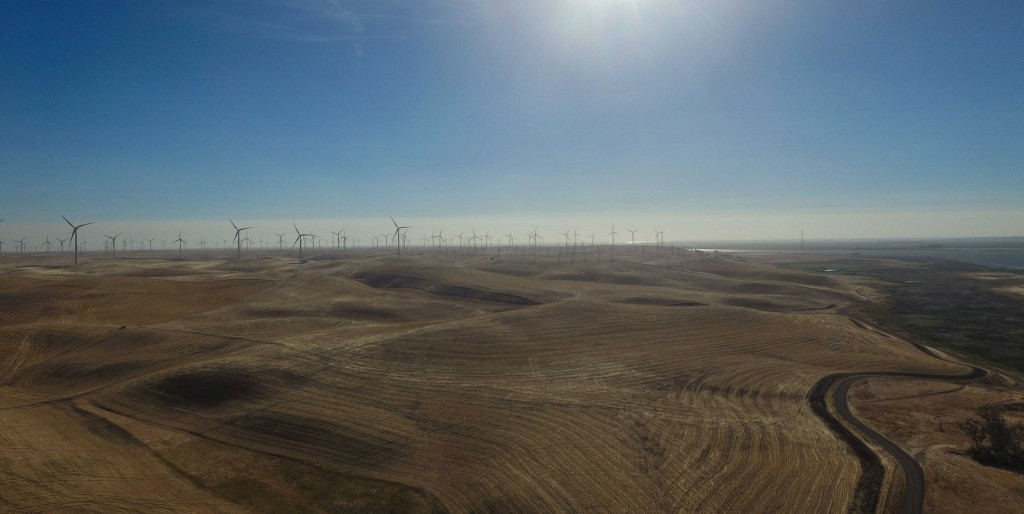 Carbon emissions reducing windmills in the Delta. Photo: Bird's Eye View