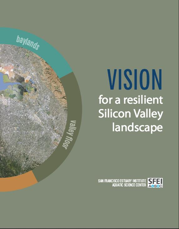 Vision for Silicon Valley