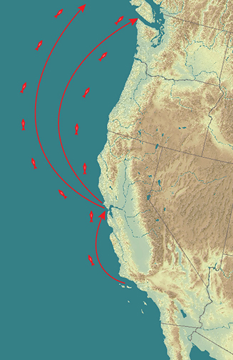 The ocean provides a seamless migration pathway north for West Coast fish displaced by changing conditions. Warmwater dolphins from Los Angeles have already found their own way into San Francisco Bay. Salmon following their nose back to inaccessible or no longer hospitable natal streams might have to be redirected. Base map: Amber Manfree