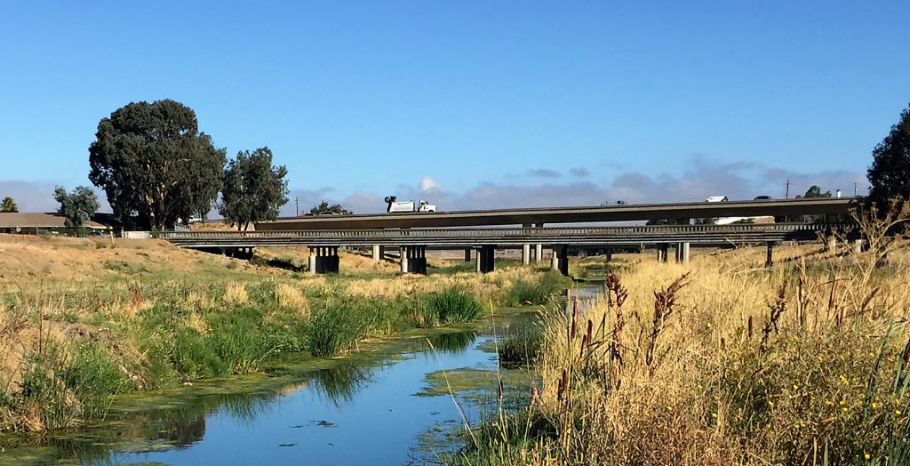 Walnut Creek near its outlet into San Francisco Bay (image courtesy SFEI)