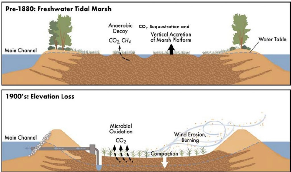 Delta subsidence graphic