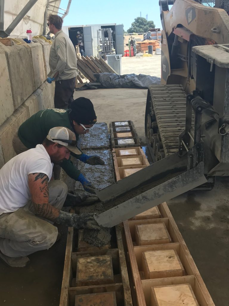 Conservation Corps building reef elements.