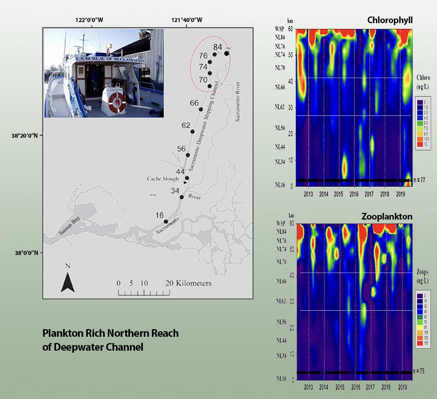 food in deepwater channel